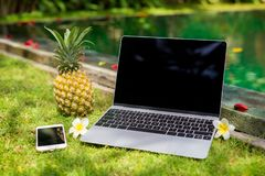 Laptop computer, mobile phone and pineapple in exotic location by the pool. Stock Photography