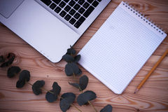 Laptop computer, notepad, pencil, green branch on wooden backgro Royalty Free Stock Images