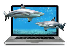 Laptop Computer With Sharks Royalty Free Stock Photo