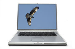 Laptop Concept Freedom Royalty Free Stock Image