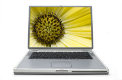 Laptop Concept Spring Stock Images