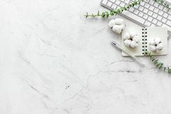 Laptop, cotton branch, notebook on white stone background flat lay space for text. Minimal freelancer desk workspace. Laptop, cotton branch, notebook on white royalty free stock images