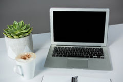 Laptop with cup of coffee and pot plant Royalty Free Stock Photos