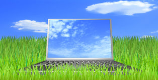 The laptop in the field. Computer, grass, sky and clouds are shown in the image Royalty Free Stock Images