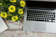Laptop and flower vase Royalty Free Stock Image