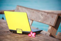 Laptop and flowers royalty free stock image