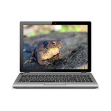 Laptop with frog on screen Royalty Free Stock Photo