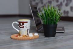 Laptop, garnek trawa i kubek kawa na drewnianym tle, obraz stock