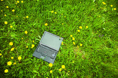 Laptop in grass Stock Images