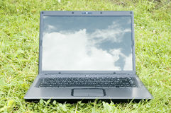 Laptop on grass Stock Photos
