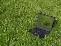 Laptop on the grass. Laptop at the green meadow Stock Photos