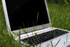 Laptop on the grass Royalty Free Stock Photo
