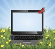 Laptop on the grass with place for text. Laptop on the grass with flowers. Butterfly, blue sky and sun rays. Concepts: comfort of wi-fi. Place your text on the Royalty Free Stock Images