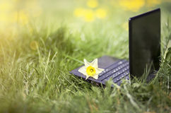 Laptop in the grass Stock Photography