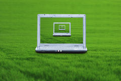 Laptop on green grass Stock Images
