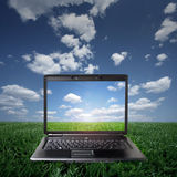 Laptop on green grass on a sunny day Royalty Free Stock Photo