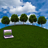 The laptop on a green meadow on the background of trees Royalty Free Stock Images