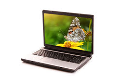 Laptop with green screen Stock Photography