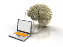 Laptop and Human brain (clipping path included) Stock Image