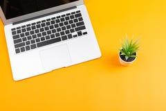 Laptop i roślina fotografia royalty free