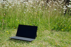 Laptop at a lawn with daisies. Laptop at a lawn with flowers illustrates a modern outdoor work place Royalty Free Stock Image