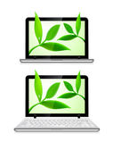 Laptop with leaves on white background Royalty Free Stock Image