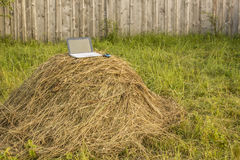 Laptop lies on a haystack on the background wooden fence outdoor. S Stock Photo