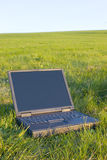 Laptop in a meadow Stock Photography