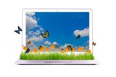 Laptop mit gelber Blume auf Gras Stockfotografie