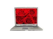 Laptop mit rosafarbenem Bildschirm des Rotes stockbild