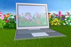 Laptop in nature Royalty Free Stock Photos