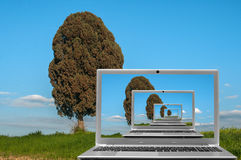 Laptop in nature Royalty Free Stock Image