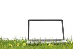 Laptop op gras Royalty-vrije Stock Afbeeldingen