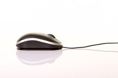 Laptop optical wheel mouse isolated on a white Stock Photography