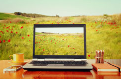 Laptop over wooden table outdoors and blurred field of flowers. Royalty Free Stock Photography