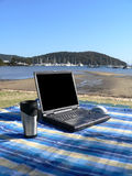 Laptop Picnic. Laptop and coffee cup in picnic setting Royalty Free Stock Photos