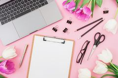 Laptop on pink background with clipboard, tulips flowers, glasses and accessories. Flat lay. Top view. Freelancer office concept. Laptop on pink background with royalty free stock photo