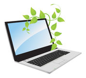 A laptop with a plant. Royalty Free Stock Image