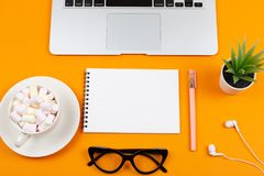 Laptop, plant, notepad and glasses royalty free stock photography