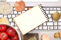 Laptop, plums and shells Stock Photo