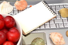 Laptop, plums and shells Royalty Free Stock Photography