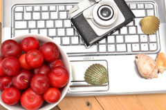 Laptop, plums and shells Stock Photography