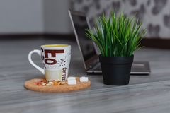 Laptop, pot of grass and a mug of coffee on a wooden background stock image