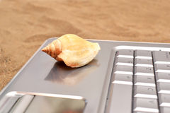 Laptop and shell on sand Stock Photography