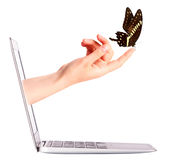 Laptop side view with  butterfly on hand Stock Images