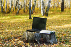 Laptop and book on the stump Royalty Free Stock Images