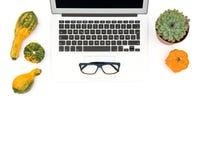 Laptop succulent plants autumn pumpkins Office workplace Royalty Free Stock Photos