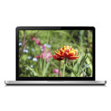 Laptop with tulip on screen Royalty Free Stock Images
