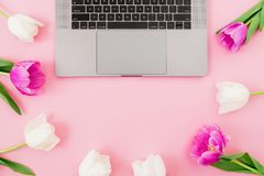 Laptop with tulips flowers on pink background. Flat lay. Top view. Composition with copy space. Laptop with tulips flowers on pink background. Flat lay. Top royalty free stock photos