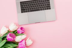 Laptop and tulips flowers on pink background. Flat lay. Top view. Computer with bouquet. Laptop and tulips flowers on pink background. Flat lay. Top view royalty free stock photo